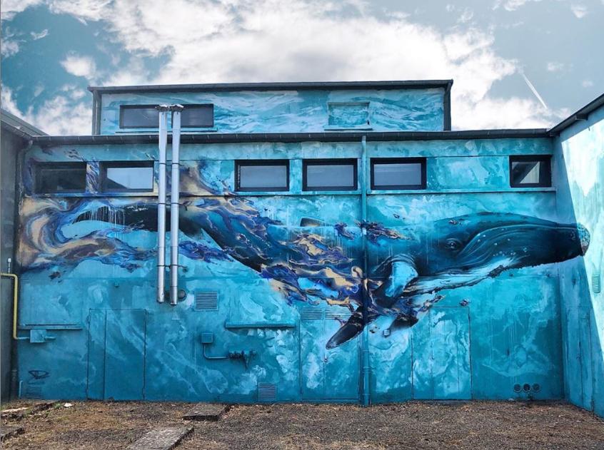 Daniel Mac Lloyd street art world animal day