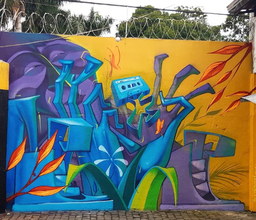 lelin alves street art