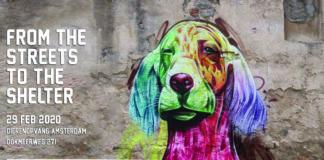 doa dierenopvang amsterdam kunst
