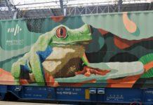 Skenar73 Noah's train street art