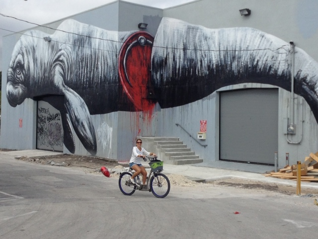 ROA street art miami