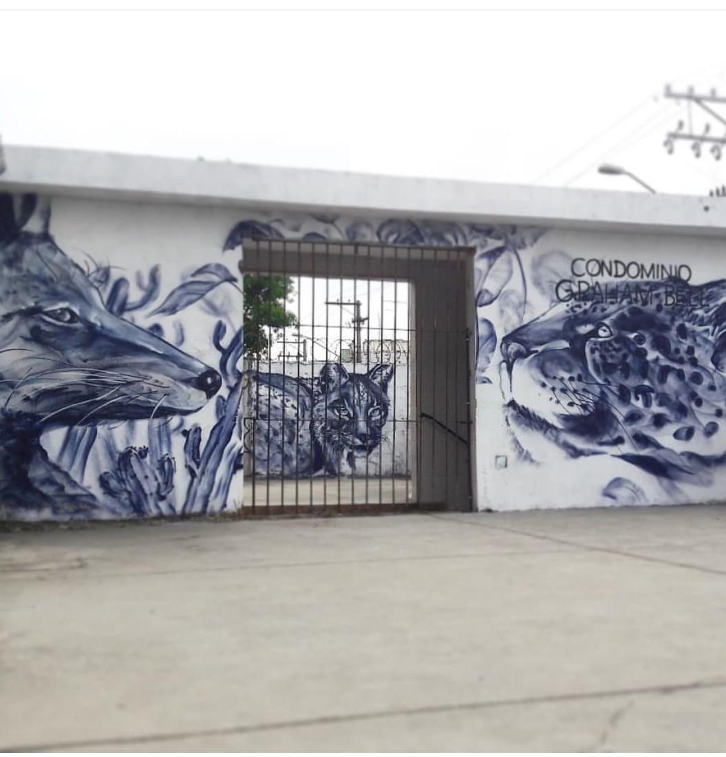 arodrigo49 street art