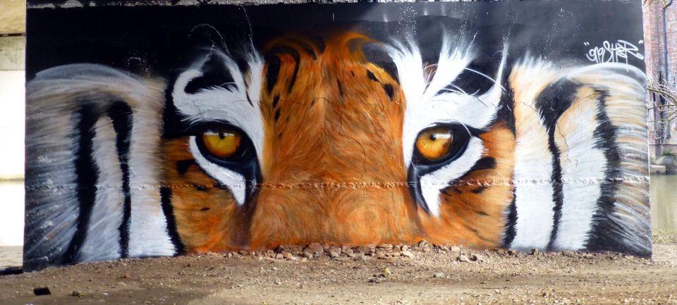 Gnasher street art world animal day