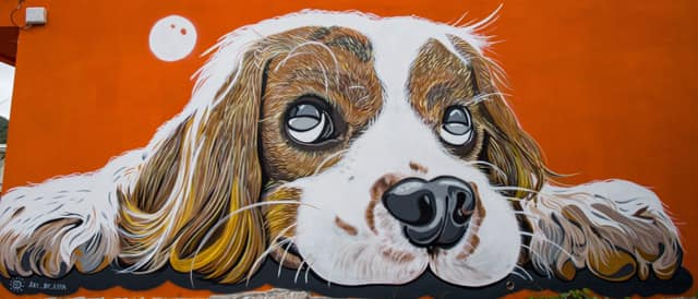 Espa street art world animal day